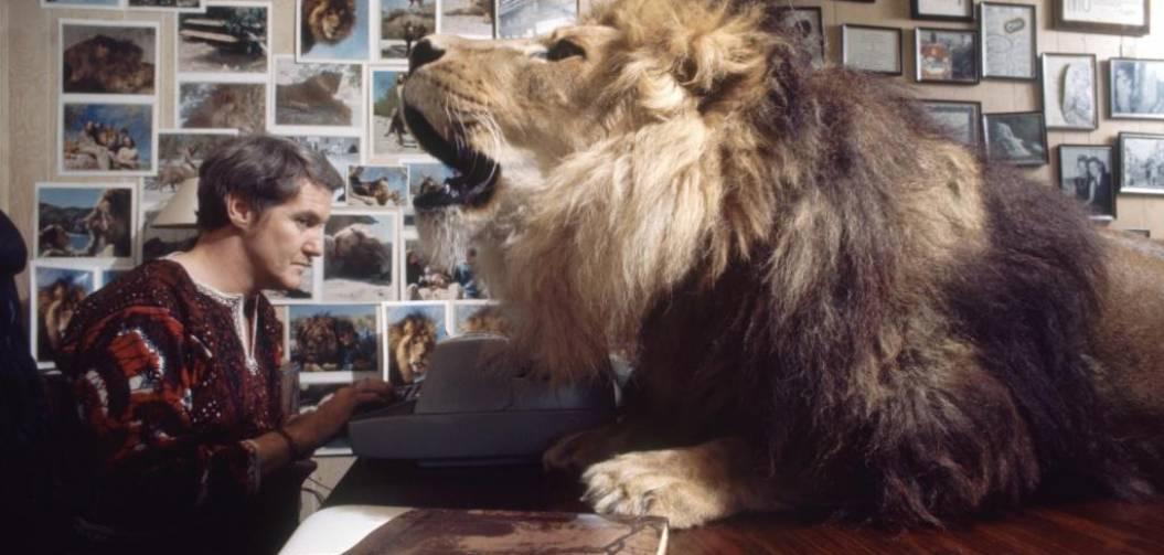 Sur le tournage de Roar, le film le plus dangereux de tous les temps