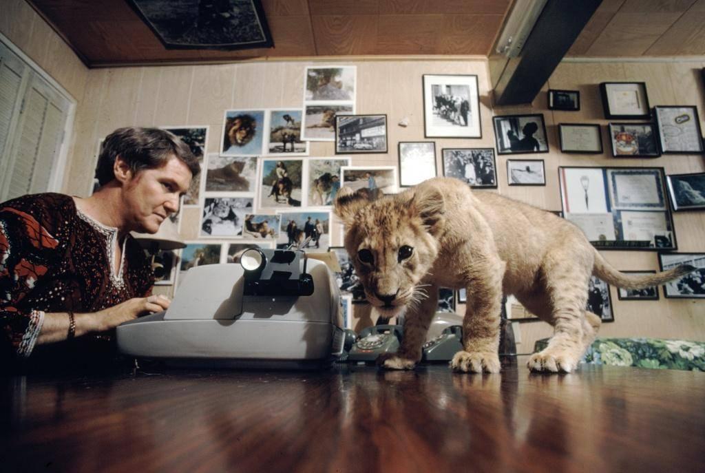 sur-le-tournage-de-roar-le-film-le-plus-dangereux-de-tous-les-temps