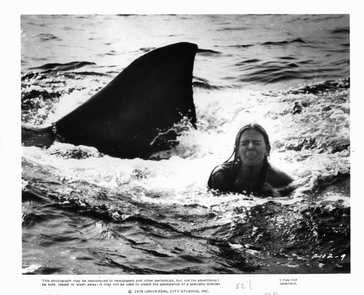 jaws-2-le-film-qui-requinque